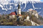 Alpine lake in Bled, Slovenia — Stock Photo