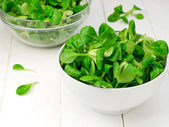 Lamb's lettuce — Stock Photo