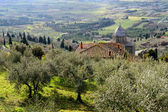 Montepulciano, Tuscany — Stock Photo