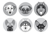 Black and white icons of different breeds of dogs — Stock Vector