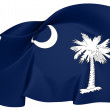 Flag of South Carolina, USA. — Stockfoto #24615665