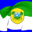 Rio Grande do Norte Flag, Brazil. — Foto de stock #24846009