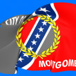 Flag of Montgomery, USA. — Stock Photo