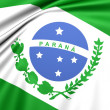 Flag of Parana, Brazil. — Stock Photo #25678275