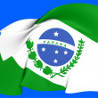 Flag of Parana, Brazil. — Stock Photo #26095611