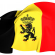 Government Ensign of Belgium — Stock Photo #26188143