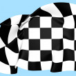 Auto Racing Chequered Flag — Stock Photo