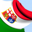 Civil Ensign of Italy — Stock Photo #28646445