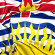Flag of British Columbia, Canada. — Stock Photo #29137751