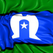 Torres Strait Islanders Flag — Stock Photo #29137863