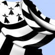 Flag of Brittany — Stock Photo #32667683