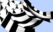 Flag of Brittany — Stock Photo
