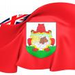 Flag of Bermuda — Stock Photo #33999603