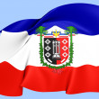 Flag of Araucania Region — Stock Photo
