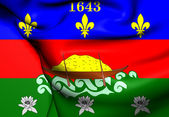 Unofficial Flag of French Guiana — Stock Photo