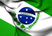 Flag of Parana, Brazil.  — Stock Photo