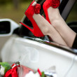 Sexy red shoes. Closeup shot of woman's legs in high hell red shoes — Stock Photo
