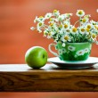 Chamomile tea cup — Stock Photo