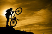 Mountain biker with bike over dramatic sky — Stock Photo