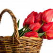 Beautiful bouquet of red tulips in a basket, isolated on white — Stock Photo #24913431