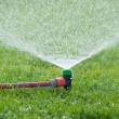 Lawn sprinkler spraying water over green grass — Stock Photo #24913487