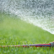 Lawn sprinkler spraying water over green grass — Stock Photo