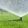 Lawn sprinkler spraying water over green grass — Stock Photo #24913503