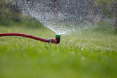 Lawn sprinkler spraying water over green grass — Photo