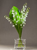Bouquet of lilies of the valley on grey background — Stock Photo