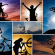 Mountain bike collage — Stock Photo
