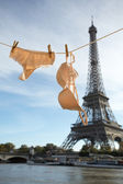 Woman's panties and bra hanging on clothes line — Stock Photo