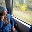 Young woman traveling by train — Stock Photo #39358379
