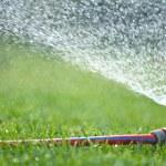 Water sprinkler — Stock Photo #43384031