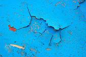 Blå rand på nära håll — Stockfoto