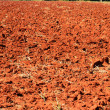 Red soil — Stock Photo #37081567