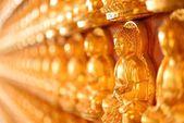 Buddha postavy na zdi — Stock fotografie