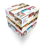 Internet Website 3D Box on White — Stock Photo