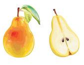 Pear set — Stockvector