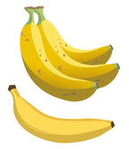 Banana — Stock Vector