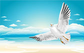Flying seagull on Beach — Stock Vector