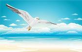 Flying seagull on Beach — Stock Vector