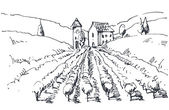 Hand drawn illustration of a vineyard — Stock Vector