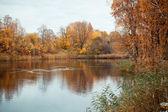 川のある秋の風景 — ストック写真