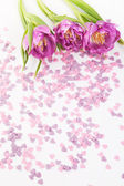 Violet tulips with small sugar hearts on white — Stock Photo