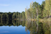 Landscape with a reflection in the lake — Стоковое фото