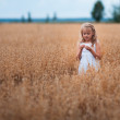 Little beautiful girl on a ripe field of oats — Stock Photo