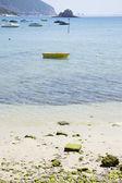きらめく湖 — ストック写真