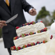 Groom cutting cake — Stock Photo