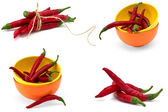 Set of chili pepper isolated on white background — Stock Photo