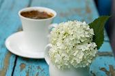 Ramo de flores hydrangia blanco brillante — Foto de Stock